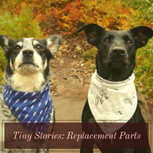 Tiny Stories: Replacement Parts