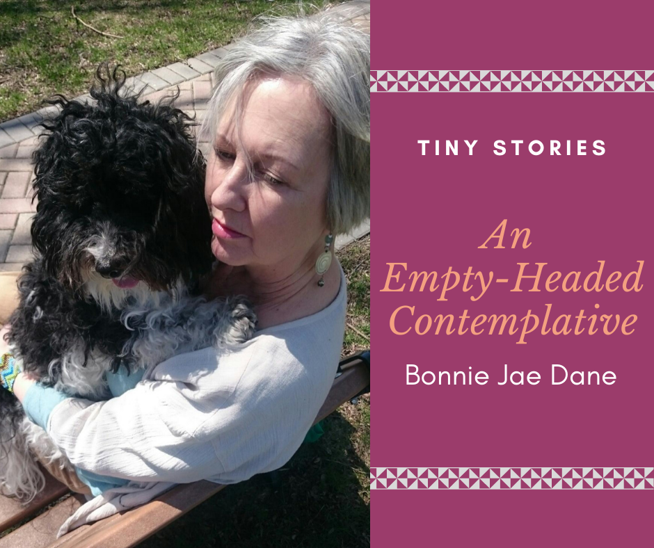 The Empty-Headed Contemplative