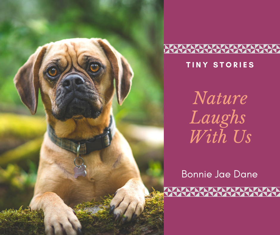 Nature Laughs With Us